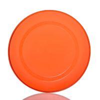 东莞厂家定制10寸一次性碟PS一次性塑料蛋糕碟小吃碟