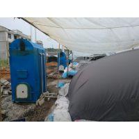 供应食用菌三孔常压灭菌香菇平菇立式锅炉 蒸气量大含预热水箱