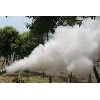 不锈钢材质烟雾机 农园大棚杀虫消毒弥雾机yd工艺制作