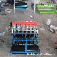 专业定制蔬菜精播机 菠菜香菜精播机 茴香精密播种机厂家