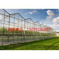 陕西智能玻璃温室的价格 玻璃温室厂家 文洛式玻璃温室