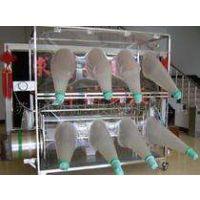 供应 无菌动物隔离包PR22 无毒PVC透明膜 精迈仪器 国产