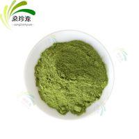 工厂直销脱水蔬菜粉 菠菜粉 菠菜汁 烘焙原料配色 提供样品