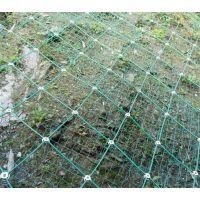 柔性边坡防护网防护网GPS2型主动防护网厂家
