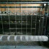 销售牛栏网网围栏 牛栏网哪里有卖河北优盾 编织铁丝牛栏网