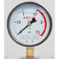中西DYP 耐震压力表 型号:HQ04-YTN-100库号:M405772