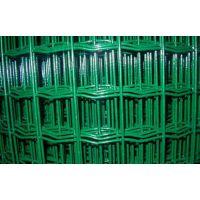 贵州贵阳厂家供应遵义荷兰网果园围网低价