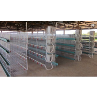 肉鸡笼养殖设备批发 厂家直销肉鸡笼 自动化三层肉鸡笼