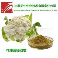 花椰菜提取物 10:1 花菜粉 优质水溶性蔬菜粉 厂家直销