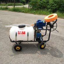 汽油大容量手推打药机 农田高压远程打药机