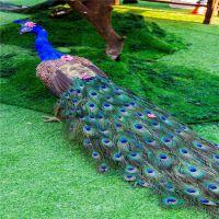 仿真草坪价格 便宜的草坪墙 户外塑料地毯