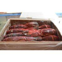 进口澳洲龙虾在青岛代理报关清关所需资料