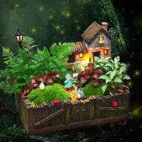 微景观植物迷你创意可爱摆件diy植物盆景生态瓶盆栽创意