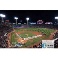 大连地区模拟棒球供应瑞康乐科技