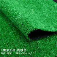 厂家供应各地游乐场草坪网 幼儿园人造草坪现货