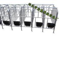 玉林猪场母猪舍安装母猪定位栏保胎待产床