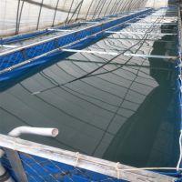 蓝色刀刮布帆布养殖池 养鱼养虾帆布水池