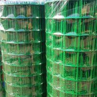 安平厂家浸塑铁丝养殖网 圈地围山荷兰网 广西6*6绿色铁丝网