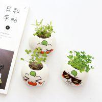 创意豆包仔盆栽花卉绿色植物桌面微景观植物 可爱迷你小盆栽摆件