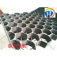 北京绿化植草格-HDPE植草格厂家