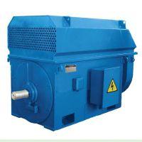 供应优质北京东方华盛高压三相异步电动机YKK5003-10 10KV 250KW IP44