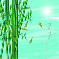 贵溪市京西竹业有限公司