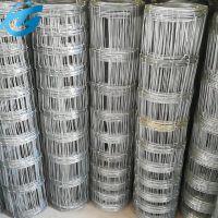 供应养殖草原网/热镀锌钢丝牛栏网