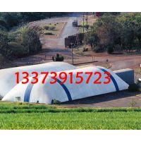 膜结构设施 膜艺术造型 恐龙乐园膜造型 透明猪猪城堡膜造型 熊猫游乐场膜结构