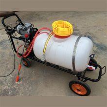 高压打药机 汽油农药喷雾器厂家 宇晨机械推车式喷雾器
