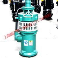 厂家直销铸铁式潜水泵、充油式潜水电泵农林灌溉水泵