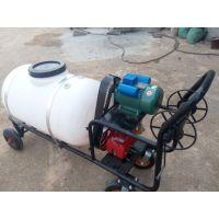采用电机动力喷雾器 润丰 养殖场用消毒防疫打药机