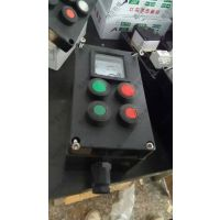 BXM(D)防爆配电箱生产IIB IIC防爆箱防爆正压柜
