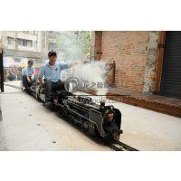 龙之盈厂家供应 儿童游乐设备 轨道小火车仿真蒸汽电动小火车