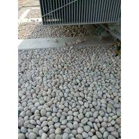 变电所鹅卵石 青岛鹅卵石 标准行业 规范要求