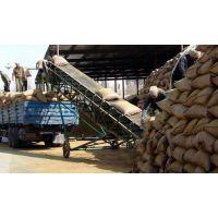 青岛棉籽壳厂家,青岛食用菌棉籽皮批发,青岛出售棉籽壳价格
