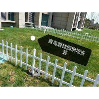 青岛现货PVC草坪护栏塑钢花坛护栏园林绿化隔离栏