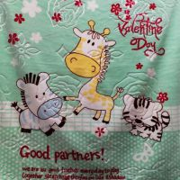 27卡通云毯压花云毯 夏季加厚幼儿园午睡珊瑚绒盖毯 婴儿小毛毯
