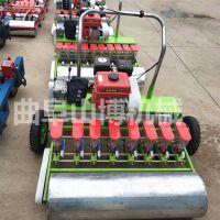 直销 白菜播种机 农场专用电动6行蔬菜播种器 定距定量