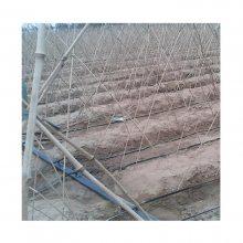 常用山药膜下滴灌带型号规格怎么选择