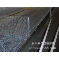 【厂家供应】养殖网、塑料养殖网、塑料网、尼龙丝网、养鸡养殖网