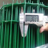 绿色浸塑养殖铁丝荷栏网圈地隔离钢丝网