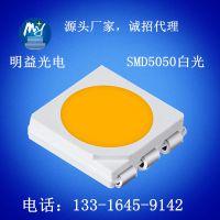 深圳专业的3528灯珠生产厂家