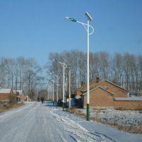 厂家批发5米6米7米新农村太阳能路灯 户外led太阳能灯 锂电池路灯