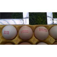 遵义鸡蛋喷码机-宏光伟业科技