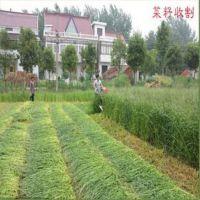 宁波志农秸秆收割机供应