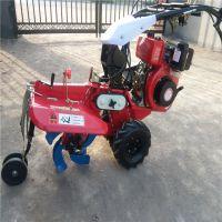 手扶拖拉机不能用的地块就用庞泰田园管理机 松土机优点大