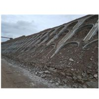 生态恢复土壤重金属修复改良剂 现货供应河南