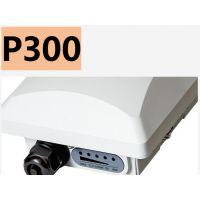 Ruckus美国优科901-P300-CN02 双频 智能室外网桥AP