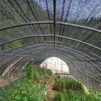蔬菜大棚遮阳网 6针加密防尘网 覆盖盖土网厂家
