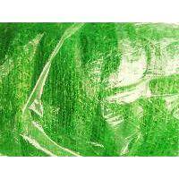石家庄3针绿色盖土网批发